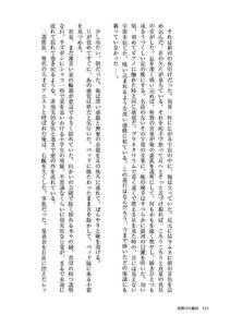 リュウミンの小説本文組みイメージ画像